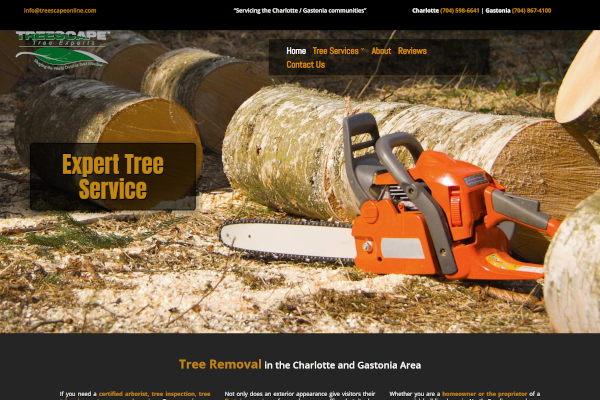 Tree Removal Service Charlotte NC